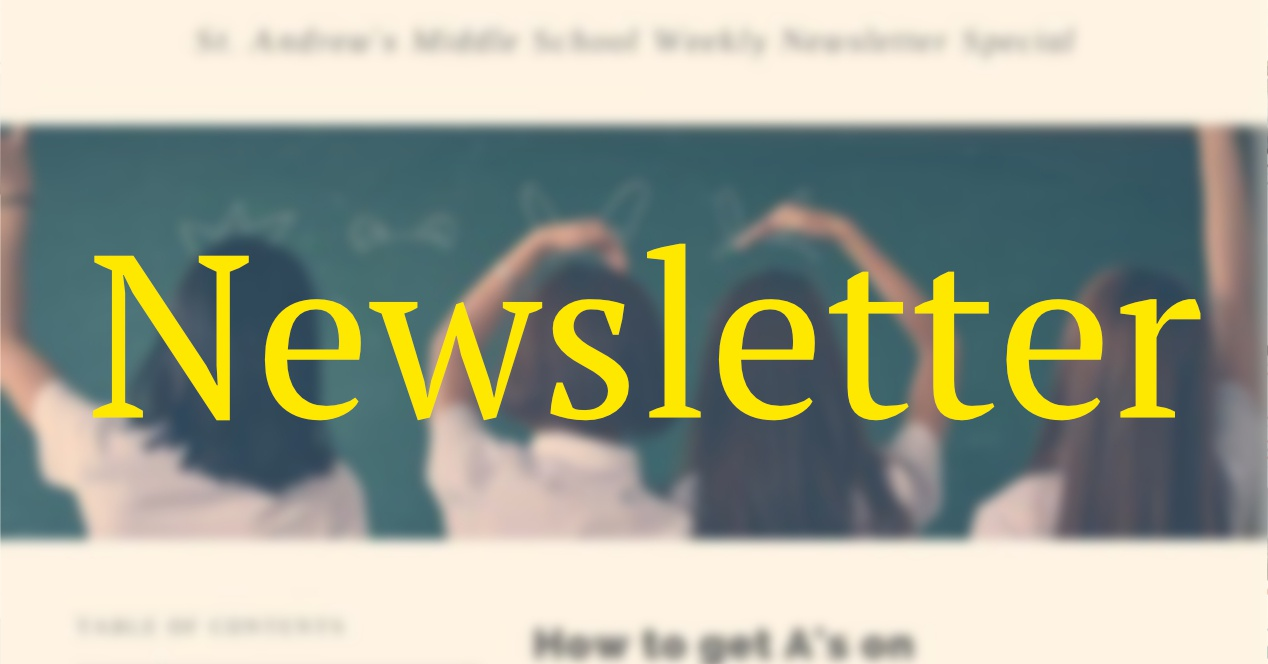 How to create your first newsletter in full 2020