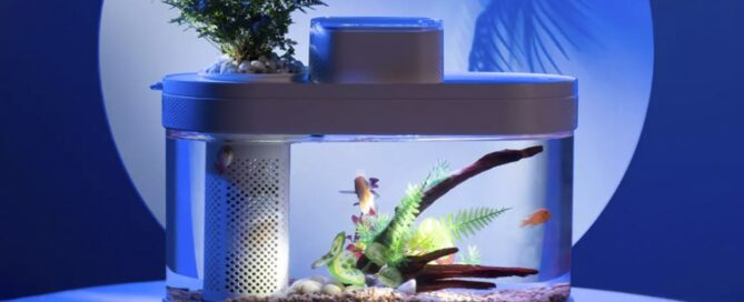 Yes, the latest from Xiaomi is a smart aquarium