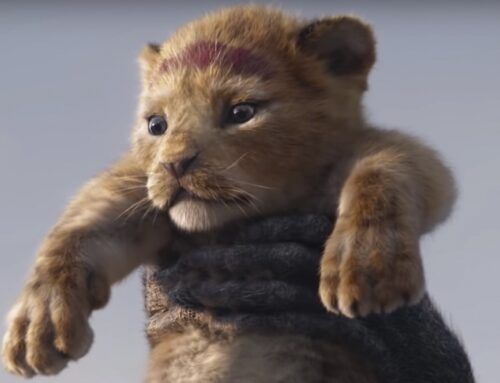 The Lion King 2 is on and this is what we know for now
