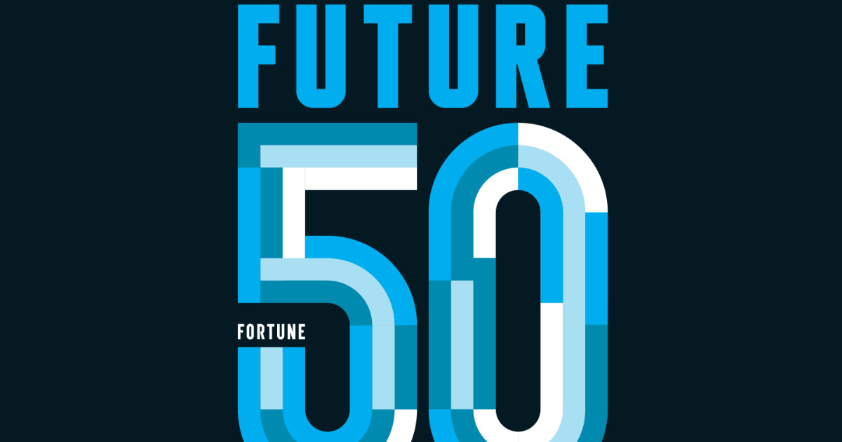 Xiaomi and Tesla among the 50 companies with the most future, for Fortune